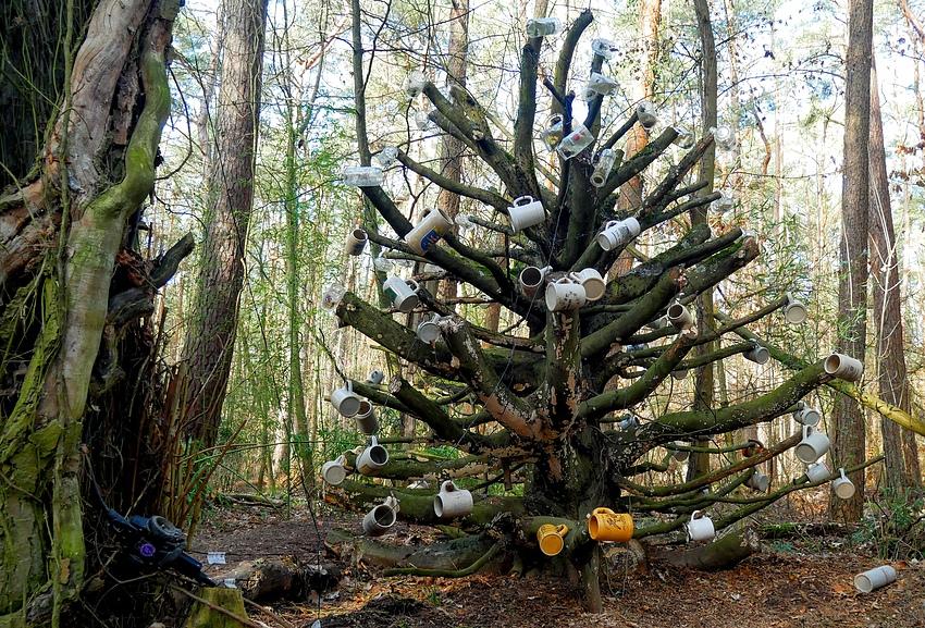 Bierkrüge an gestutztem Baum